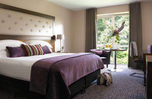 dunboyne-castle-hotel-spa-deluxe-room